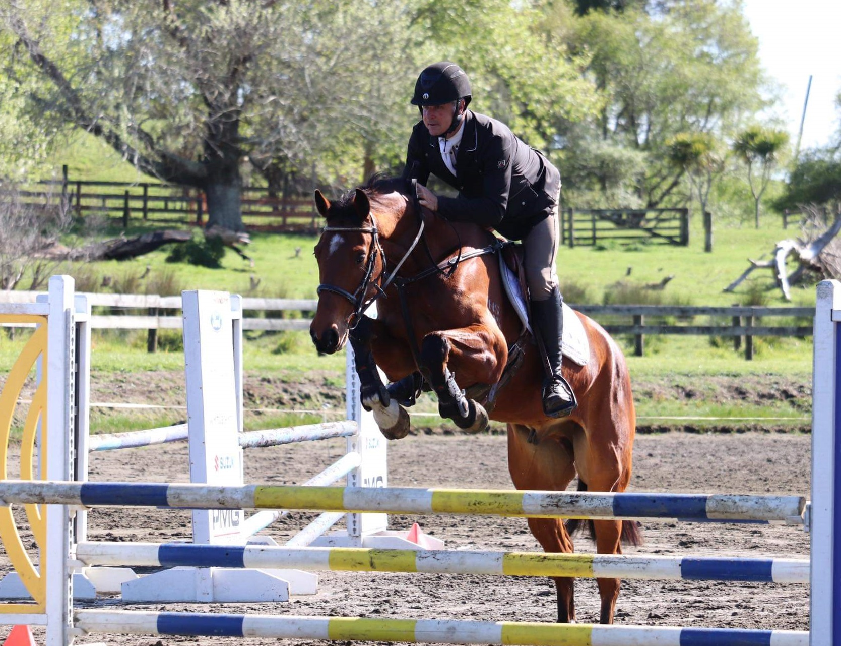 Edward Bullock on Kiwi Sundance as a 5yr, schooled using exercises in Strides Exercises.